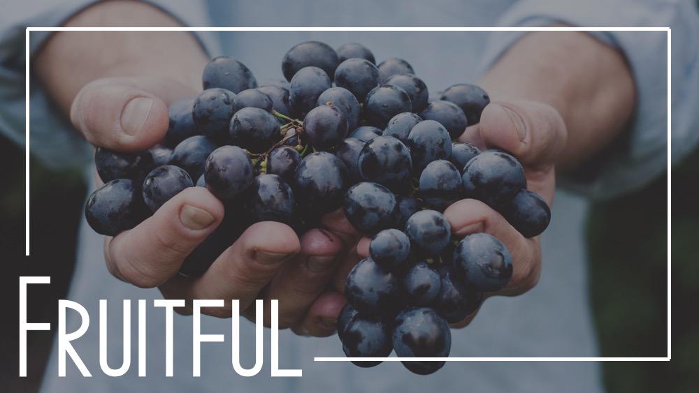 12.30.18 Be Fruitful