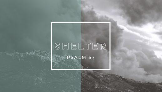 4.19.20 Shelter